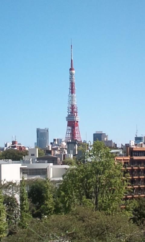 東京フェスタやっています